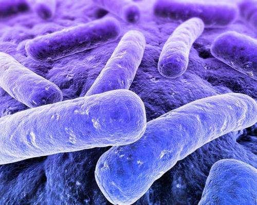 bacteriadete بایوساید (biocide)، ضد خزه، ضدجلبک، باکتری کش، میکروب کش، ویروس کش/آنتی باکتریال، آنتی ویروس/ضدعفونی کننده/گندزدا